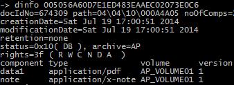 dinfo command on dsClient