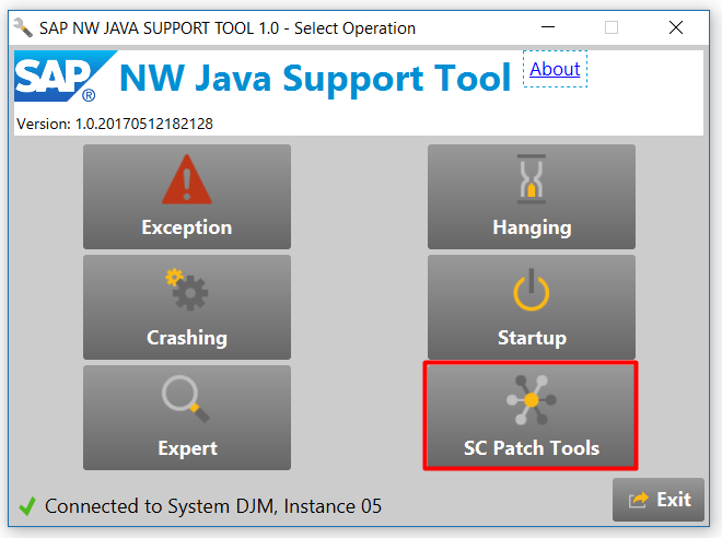 SAP NW Java Support Tool: Main window